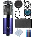 MXL R144 Ribbon Microphone for Vocals, Brass, Horns, Acoustic and Electric...
