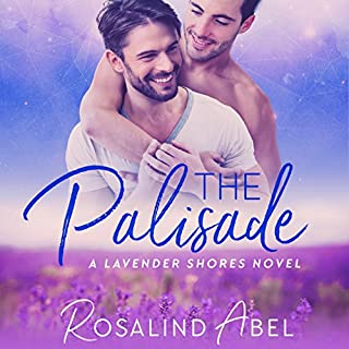 The Palisade cover art