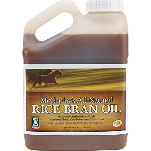 best rice bran oil for horses 2020