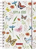"""BRUNNEN 1072975040 """"Schmetterling"""" , Schülerkalender/Tageskalender 2019/2020 , 1 Seite = 1 Tag, Sa. + So. auf einer Seite , Blattgröße 14,8 x 21 cm , A5, PP-Einband"""