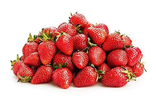 フローズンフルーツ 冷凍フルーツ 各種 (いちご (とちおとめ)500g)