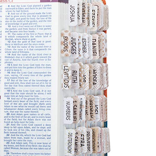 Mr. Pen- Bible Tabs for Catholic or Other Bibles, 75 Tabs, Laminated, Bible Journaling Supplies, Bible Tabs Old and New Testament, Bible Tabs for Women, Bible Tabs for Journaling Bible