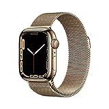 Apple Watch Series7 (GPS+Cellular) Cassa 41mm in acciaio...