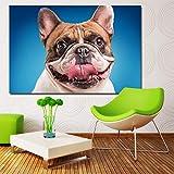 NIMCG Perros Fondo Coloreado Bulldog Hocico Lengua impresión Pintura Lienzo Cuadros de Pared para Sala Lienzo Pintura al óleo (Sin Marco) 40x50CM