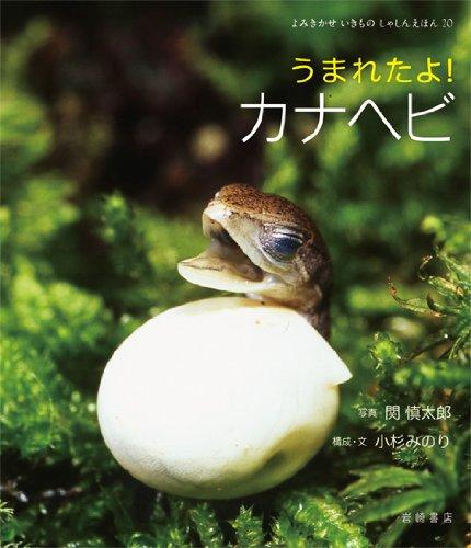 うまれたよ! カナヘビ (よみきかせ いきものしゃしんえほん 20)