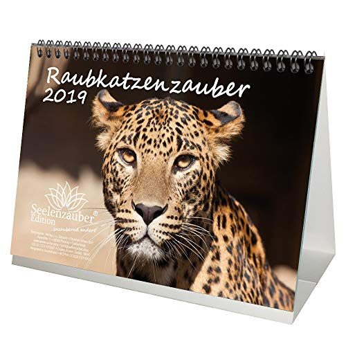 Raubkatzenzauber · DIN A5 · Premium Tischkalender/Kalender 2019 · Raubkatze · Tiger · Löwe · Panther · Puma · Gepard · Afrika · Tiere · Wildnis · Natur · Edition Seelenzauber