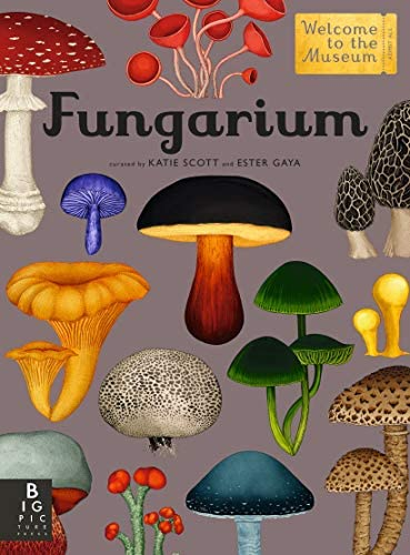 Fungarium Welcome to the Museum product image