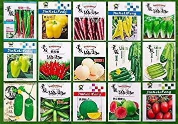 Potseed Honig Kürbis 18 Seeds: Gemüsesamen Non-GMO Garten Buntes Kleinpaket Original-Frühling und Herbst Aussaat Hybrid Gemüsesamen
