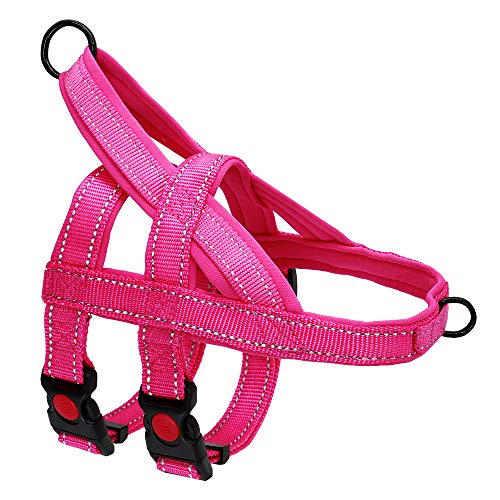 Beirui No Pull Escape Proof Dog Harness for Small Medium Large Dogs - Soft Padded Reflective Puppy Dog Walking Harnesses (Hot Pink, S)