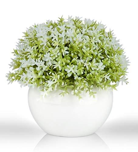Mini Artificial Plant (5') in White Ceramic Pot | Decorative Faux Plant for Home/Office Decor | Small Potted Topiary | Farmhouse Decor Accent | Desk/Kitchen/Bathroom/Shelf Fake Plant (Green & White 1)