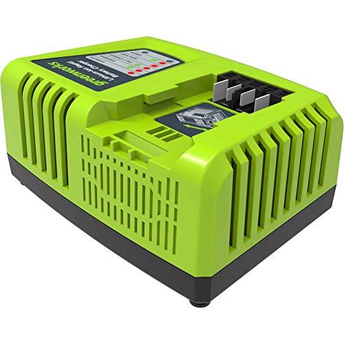 Greenworks 2924107 Caricabatterie Rapido G40UC4 (Li-Ion 40 V, 4 A, Tempo di Ricarica 30 min, con Batteria 2 Ah Adatto a Tutti i Dispositivi e Batterie della Serie 40 V Greenworks Tools), Verde