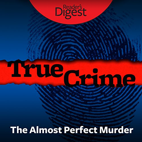 The Almost Perfect Murder cover art