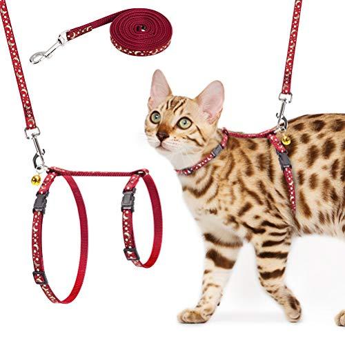 SCIROKKO Katzengeschirr und Leine, verstellbar, ausbruchsicher, Brustgurt mit Sicherheitsschnalle für Spaziergänge im Freien, passend für kleine, mittelgroße und große Kätzchen, leuchtet im Dunkeln