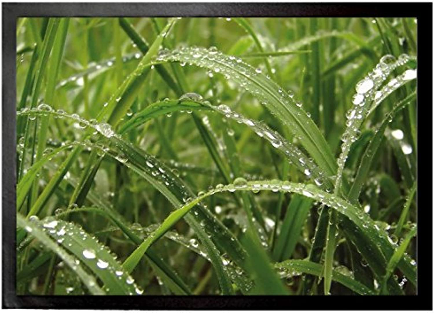 Plants Door Mat Floor Mat - Dew Drops in Green Grass (28 x 20 inches)