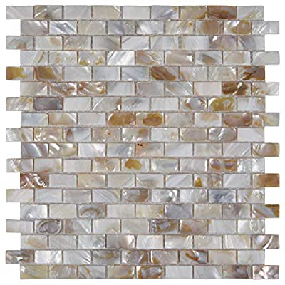 LONGKING Mother of Pearl Tiles, Decorative Tiles (A-01, 10 Tiles)