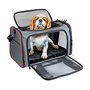 GOOPAWS Soft-Sided Pet Travel Carrier, Airline Approved Cat Carriers Dog Carrier Collapsible, Durable, Top Loading, Car Seat for Small Medium Cats Dogs Puppies, 19″