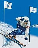 Wintersport in Gastein: Fotoband - Franz Hochwarter