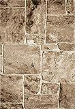 VIMODA Teppich Modern Stein Mauer Optik in Beige Braun, Maße:120 x 170 cm - 4