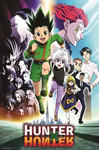 Theissen Hunter X Hunter Group Anime Poster - Matte Poster Frameless Gift 11 x 17 Zoll (28cm x 43cm) *IT-00132