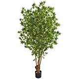 Nearly Natural 6' Maple Artificial Silk Trees Green