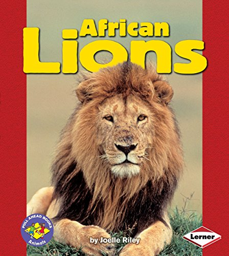 African Lions (Pull Ahead Books ― Animals)