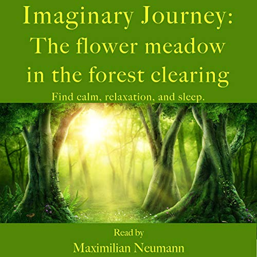 Imaginary Journey - The Flower Meadow in the Forest Clearing cover art