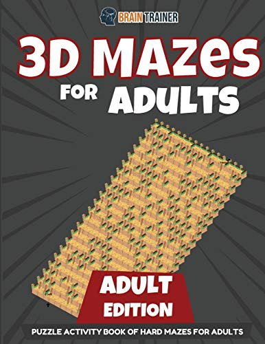3D Mazes for Kids 15 Year Old Edition - Fun Activity Book of Mazes for Girls and Boys (Ages 15)