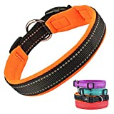 Puppy Collars, Adjustable Reflective Neoprene Padded Pet Collar, Basic Dog Collars