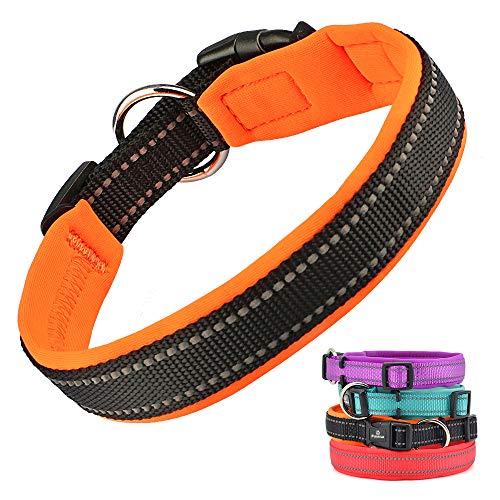 PcEoTllar Einstellbare Hundehalsband Nylon Reflektierend Neopren Gepolstert Verstellbar Halsband Große Kleine Hundehalsbänder Leichtes Welpenhalsband mit Hundelicht - Orange - M