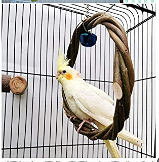 AM ANNA Bird Swing Toys, Natural Apple Branch Bird Parrot Perches Rings Chewing Bell Toy for Parakeets Cockatiels Conures ...
