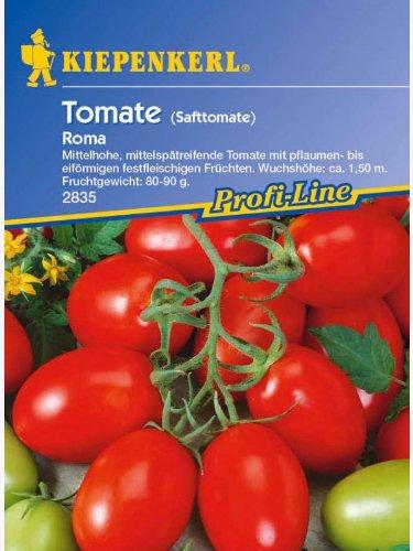 Tomaten Eiertomaten Roma Safttomate