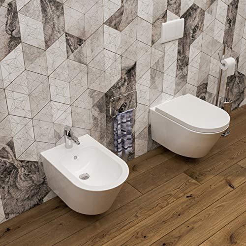 Sanitari bagno Bidet e Vaso WC SOSPESI filomuro con coprivaso sedile softclose. Arco