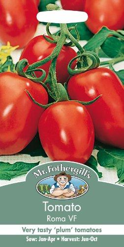 Mr Fothergill's 25503 Graines de Légumes Tomate Roma VF