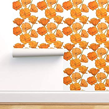 Spoonflower Peel and Stick Removable Wallpaper Poppies Wild Flowers California Orange Pen and Ink Hand Drawn Watercolor Summer Print Self-Adhesive Wallpaper 12in x 24in Test Swatch