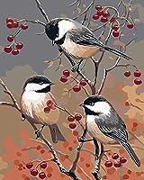 大人のための数字の鳥の枝によるDIY絵画大人のための事前に印刷されたキャンバス絵画キット初心者16X20インチ(フレームなし)