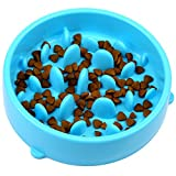 H&S Slow Feeder Dog Bowl - Slow Eating Dog Bowl - Interactive Feeder - Slow Down Feed Dog Cat Feeding Bowl - Pet Bloat Stop Dog Bowl