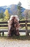 Felltrade Merino Schaffell Lammfell Fell echt groß 130-140 cm weiß-braun geflammt ökologische Gerbung