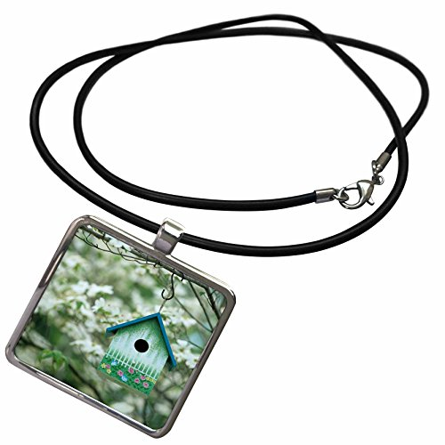 3dRose Danita Delimont - Bird House - Bird House nest Box in Flowering Dogwood Tree in Spring, Illinois - Necklace with Rectangle Pendant (ncl_250848_1)