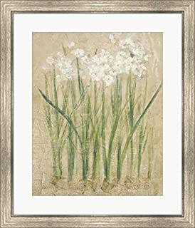 Narcissus Cool by Cheri Blum Framed Art Print Wall Picture, Silver Scoop Frame, 26 x 30 inches
