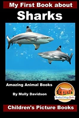 My First Book about Sharks - Amazing Animal Books - Children's Picture Books