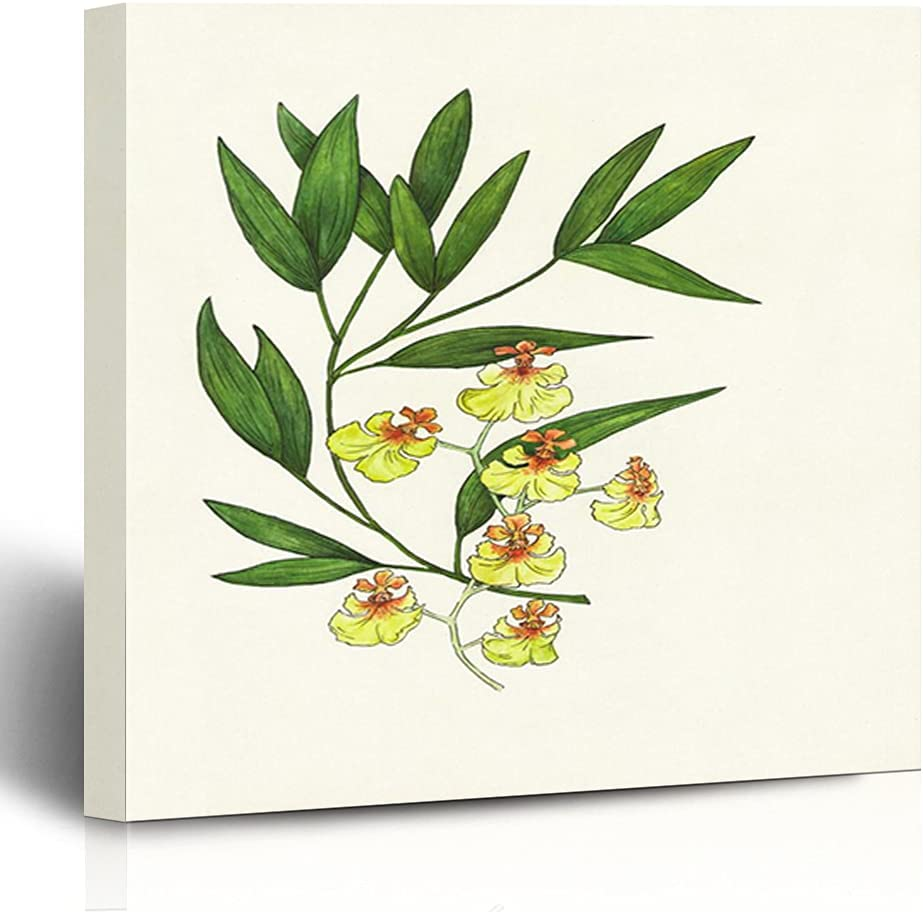 FAREYY Canvas Prints Contemporary Max 58% OFF Art Wat Oncidium Yellow Orchid Limited price