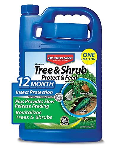Tree and Shrub Feed Fertilizer