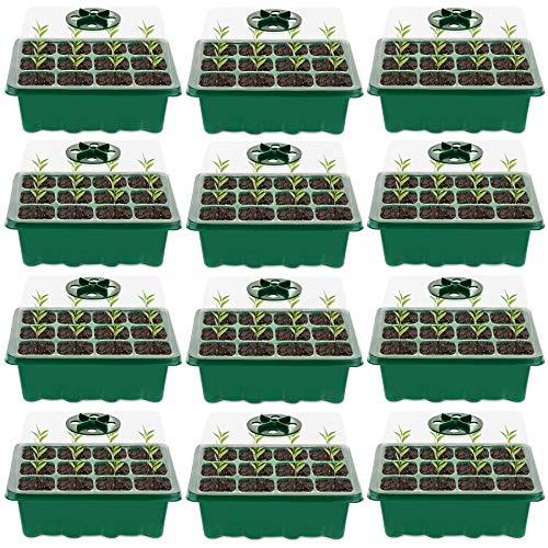 Minstores Mini Gewächshaus - für bis zu 12 Pflanzen Je Zimmergewächshaus, Zimmergewächshaus Anzuchtkasten Mini Gewächshaus ,Grün/Transparent (12 Stücke)