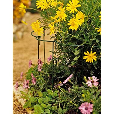 Gardener's Supply Company Large Curved Link Stakes, Set of 12