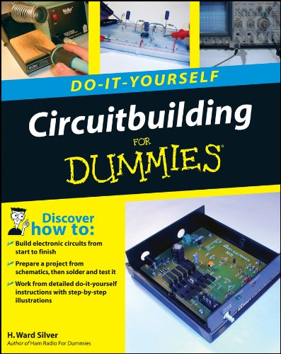 Circuitbuilding Do-It-Yourself For Dummies (English Edition)