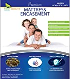 Bed Bug Mattress Cover Queen Size - Zippered Waterproof Mattress Protector - Hypoallergenic Dust Allergy Proof Mattress Encasement - Deep Pocket Cotton Terry Top