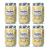 Nutribén Potitos De Manzana, Naranja, Plátano Y Galleta Desde Los 6 Meses Pack de 6 x 235gr. 6 Unidades 235 g