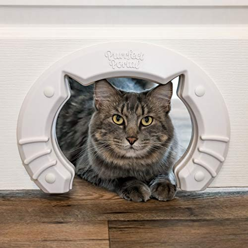 Cat Door Built In Interior Pet Door for Small, Medium, & Large...