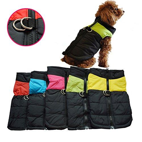OULII Vêtements pour animaux de compagnie pour chien chat chiot chien manteau veste Ski pour animaux de compagnie gilet imperméable - taille S (vert)