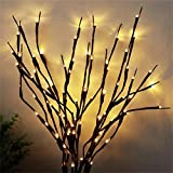 AMARS 2 Pack Decorative LED Lighted Branch Lights Battery Operated Artificial LED Twig Branches Decoration for Home Living Room Christmas Vase (Warm White, 29.5 Inches, 20 LEDs)